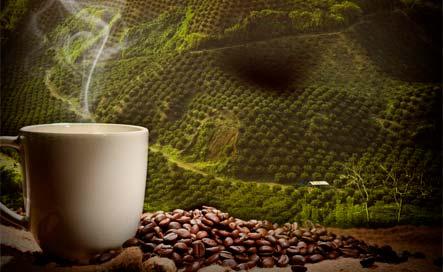 café colombia